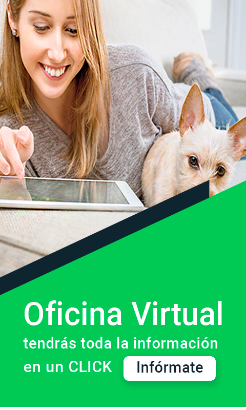 Oficina virtual Gomez Group Metering